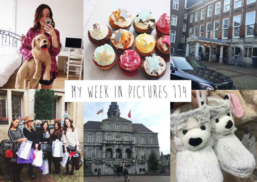 My week in pictures 114